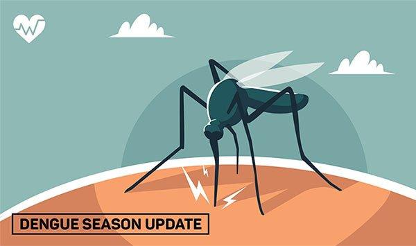Dengue Information