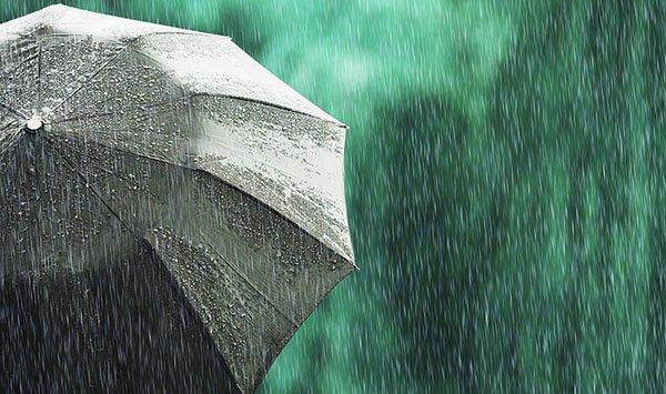 สุขภาพในสายฝน